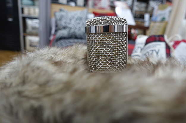 Voice Over Microphone in Fur